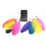 Colorful Feather Loop Earrings